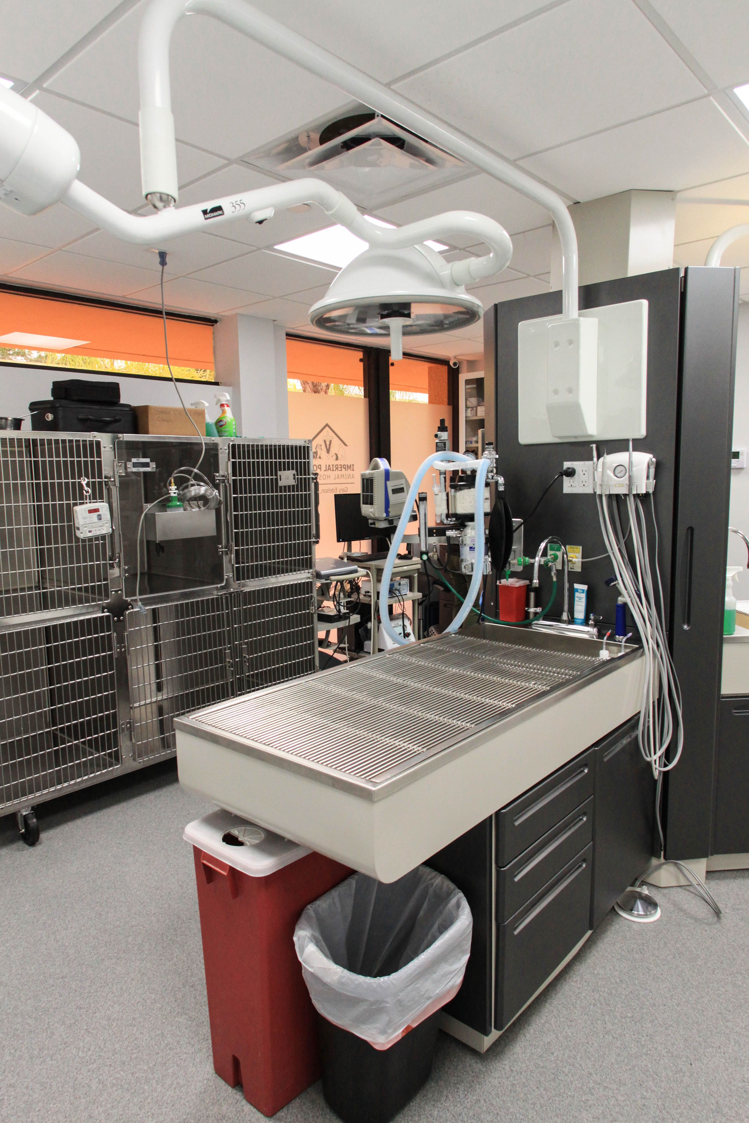 10++ Highland pointe animal hospital ideas in 2021