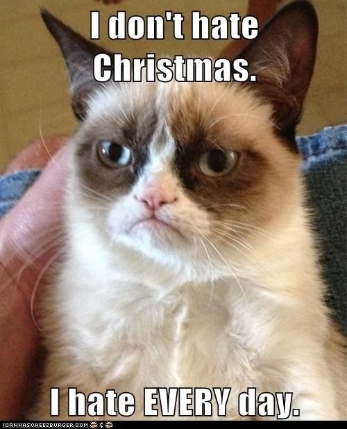 I don't hate Christmas!