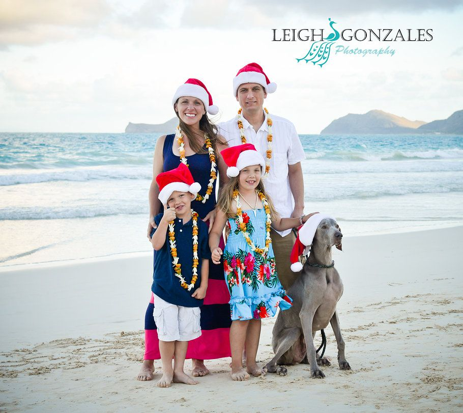 Leigh Gonzales Photography