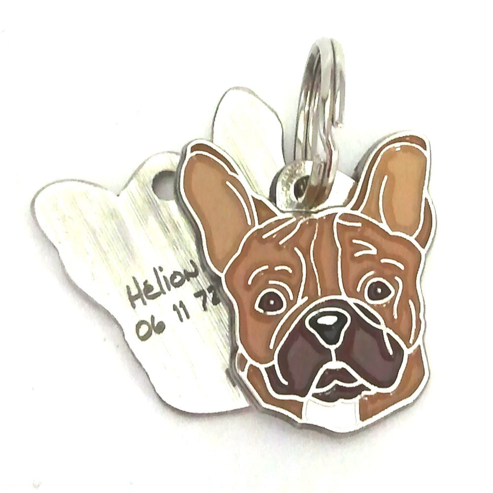 Create And Order Pet Tags Mjavhov With Laser Engraving Personalised Texts Online Quality Stainless Steel Pet Tags Pet In 2020 Pet Tags Engraved Pet Tags Pet Id Tags