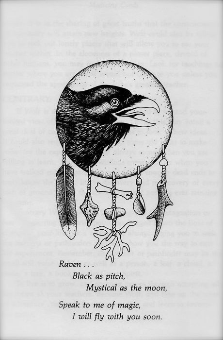 Raven, a page from Medicine Cards by Sams & Carson.