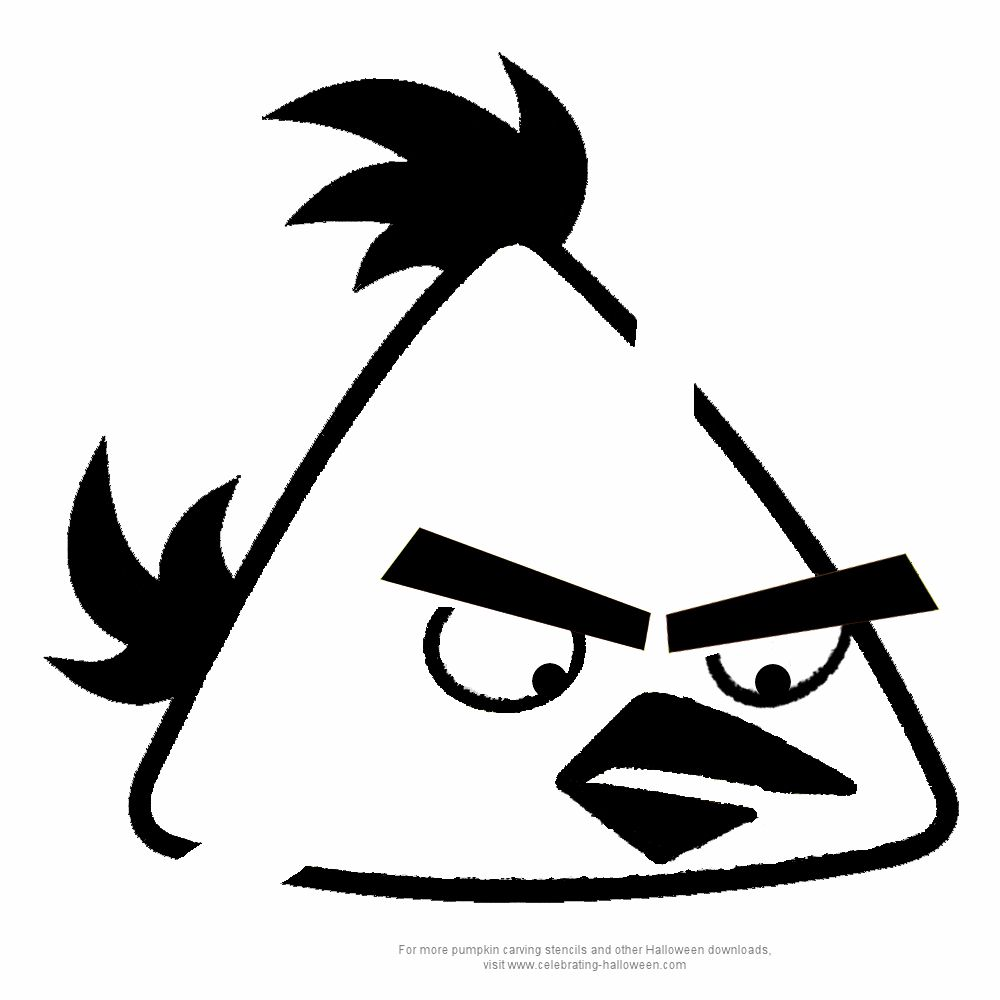 photograph about Angry Birds Pumpkin Carving Patterns Printable referred to as Offended Birds pumpkin stencil Halloween Indignant birds