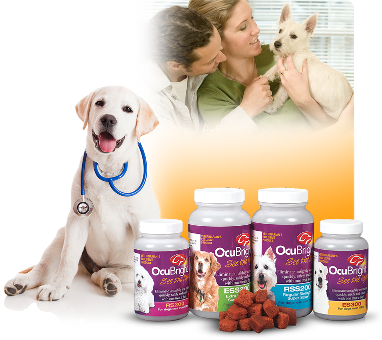 Ocubright What Are Tear Stains Pets Dog Grooming Food Animals