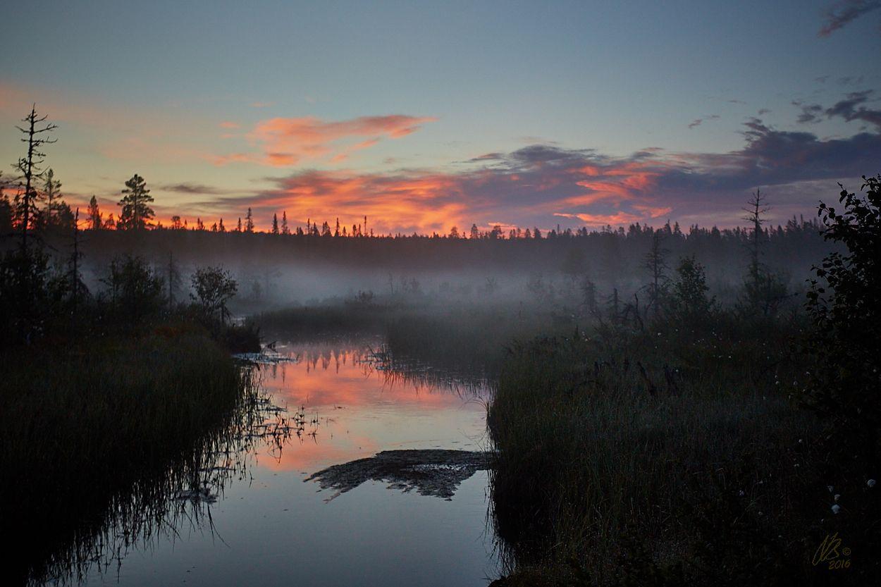 Gryning vid Geddtjenn... - http://www.wildlifephotographer.se/blog/2016/06/gryning-vid-geddtjenn/ #Geddtjennbäcken, #Geddtjennn, #Gryning, #Midsommar, #Sommar Wildlifephotographer.se | Leif Bength