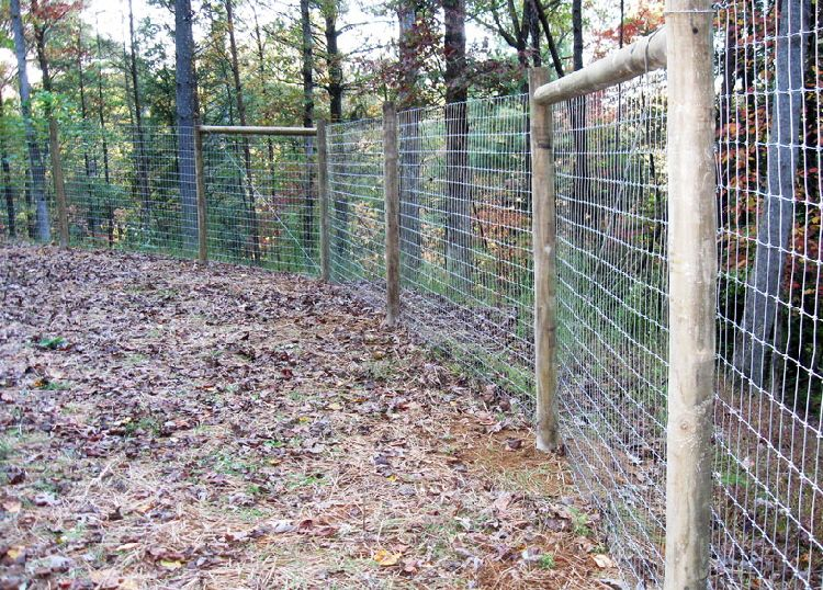 6 Ft Tall Woven Horse Wire Fence On All Wood Post Deer