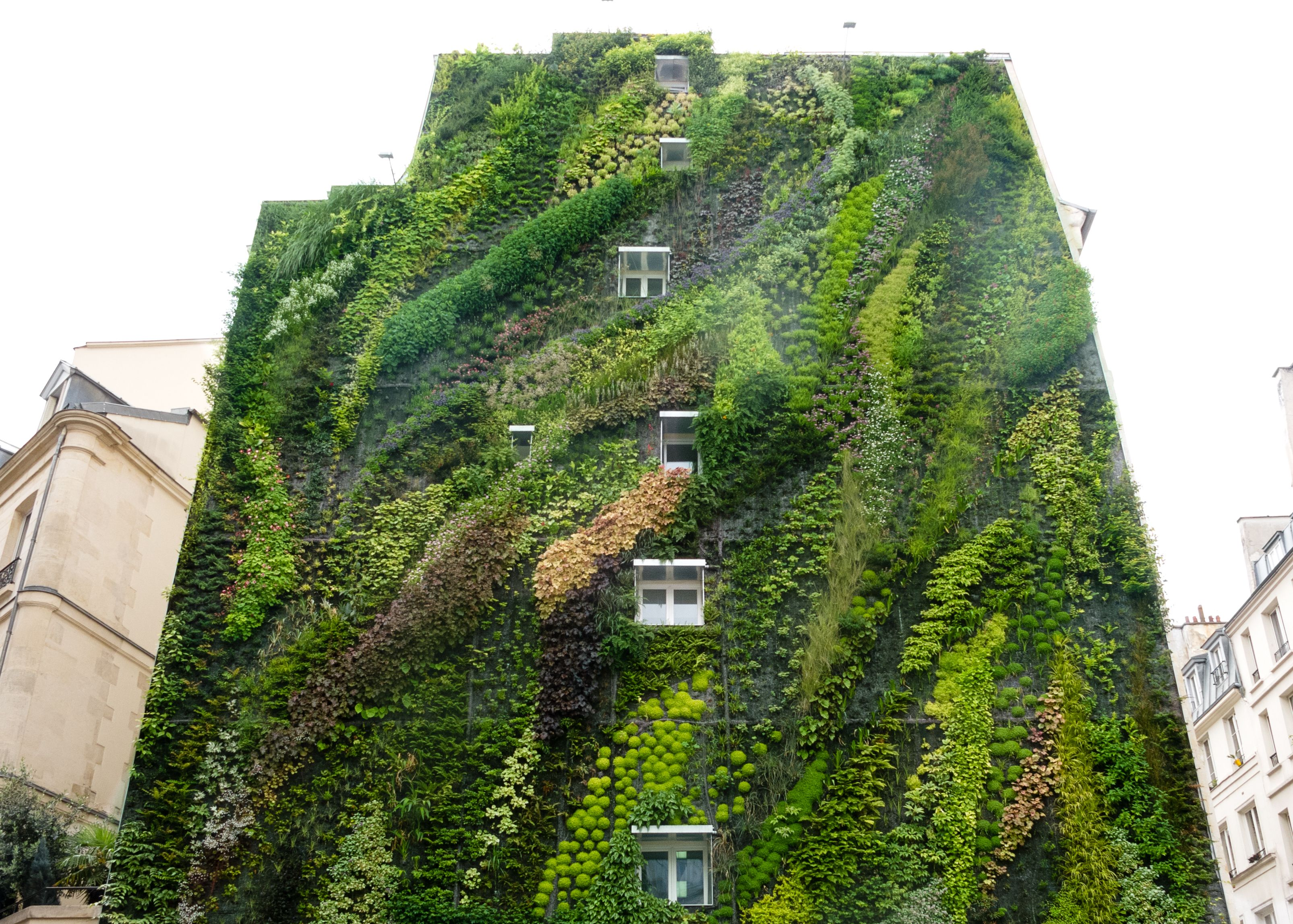 Garden Ideas Amazing Vertical Gardening Ideas Pinterest And