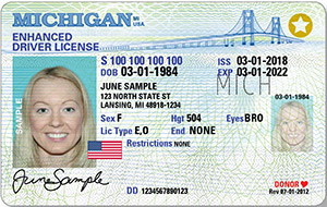 Sos Real Id Drivers License Real Id Michigan Secretary Of State