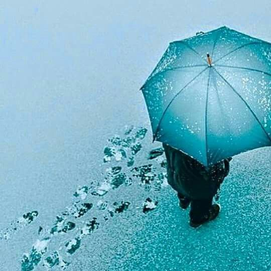 ﺗﺘﻐﻴﺮ ﺃﺷﻴﺎﺀ ﻛﺜﻴﺮﺓ ﻓﻲ ﻫﺬﺍ ﺍﻟﻮﺟﻮﺩ ﺗﺘﺒﺪﻝ ﺗﺘﺸﻜﻞ ﺇﻻ ﺍﻟﻮﺩﺍﻉ ﻟﻪ ﻟﻮﻥ ﻭﺍﺣﺪ ﺭﻏﻢ ﺍﻟﺴﻨﻴﻦ ﻻ ﻳﺘﻐﻴﺮ Patio Umbrella Outdoor Decor Outdoor