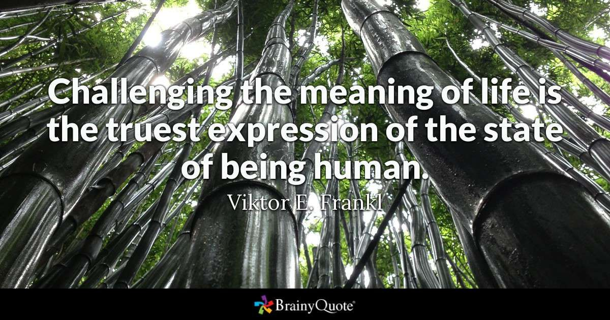 Viktor E Frankl Quotes Roosevelt Quotes Prince Quotes Eleanor Roosevelt Quotes