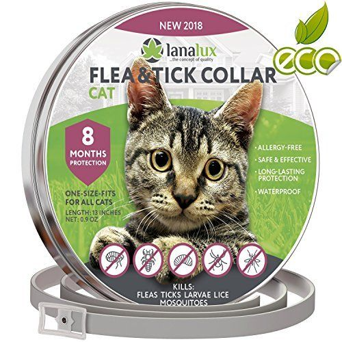 Lanalux Flea Collar Flea Tick Prevention Cats One Size Tick Prevention Fleas Training Your Dog
