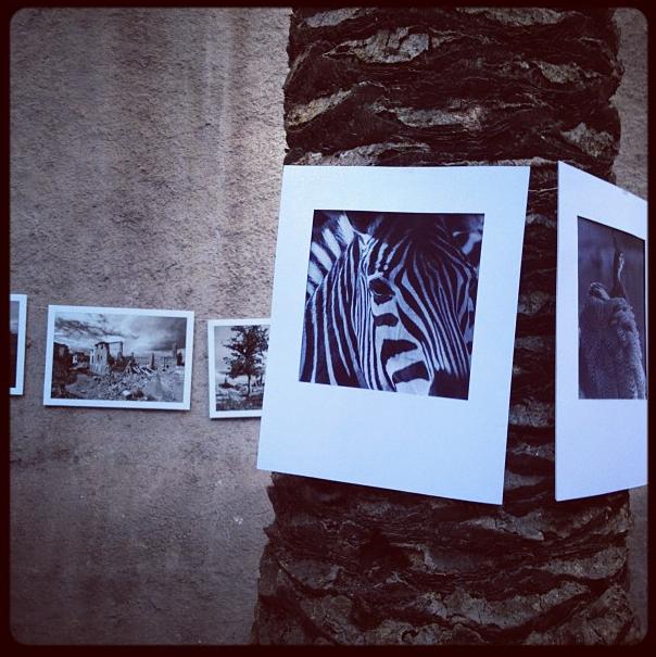 Fotojornada - 21 junio 2012 - Idep Barcelona