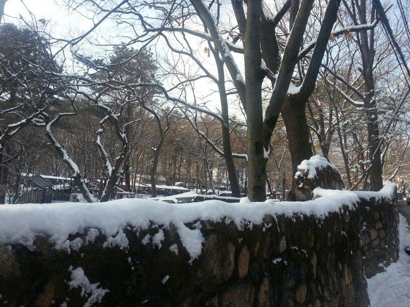 새해첫날 내린 눈~~