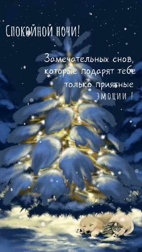 Спокойной ночи красивые открытки картинки вечерние сообщения цитаты инстаграм сторис