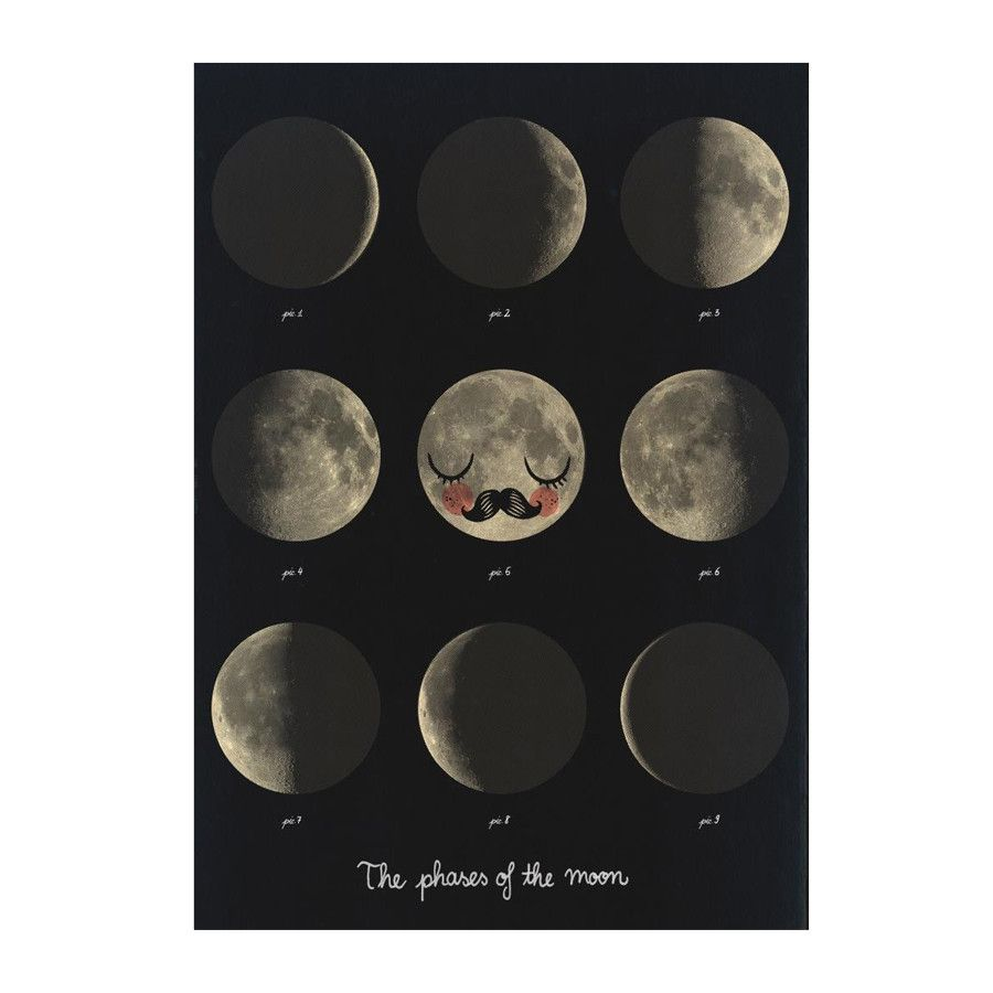 Poster . Phases of the Moon - Black