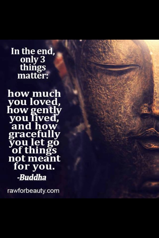 In The End, Only 3 Things Matter. How Much You Loved, How Gently You Lived,  And How Gracefully You Let Go Of Things Not Meant For You.its HARD To Let  ...