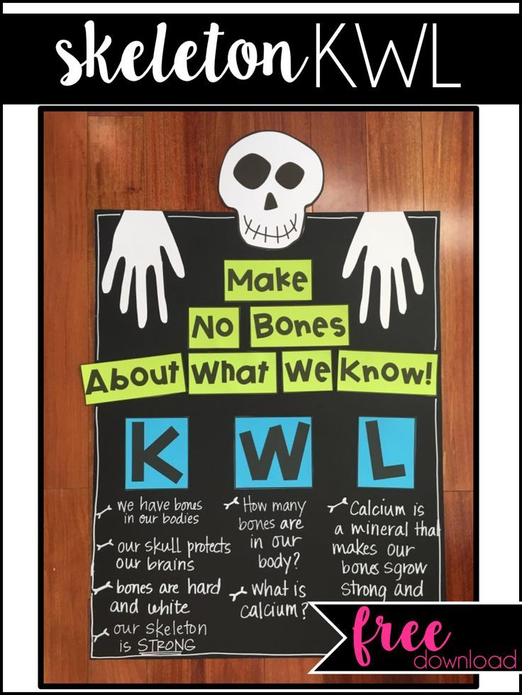 Teaching The Skeletal System Anchor Charts Skeletal