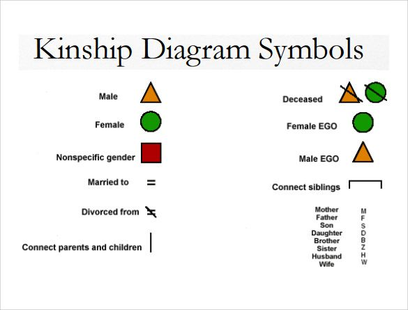 A Useful Chart Of The Basic Key To A Kinship Chart Or Diagram In