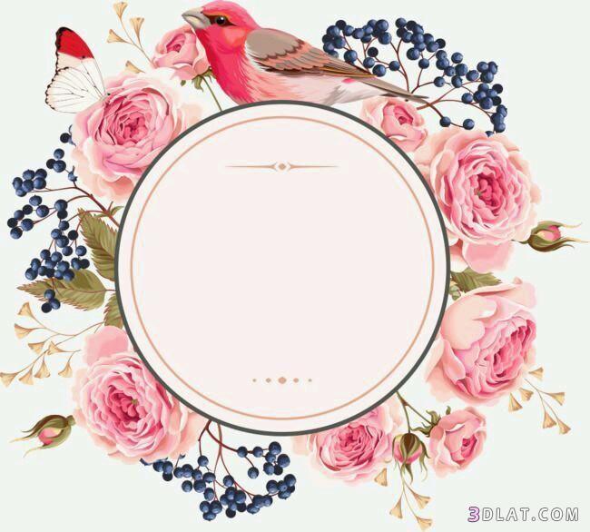اطارات ورود فارغه للتصميم اجدد الاطارات والبراويز للكتابه عليها2018 Vector Flowers Floral Border Design Flower Frame