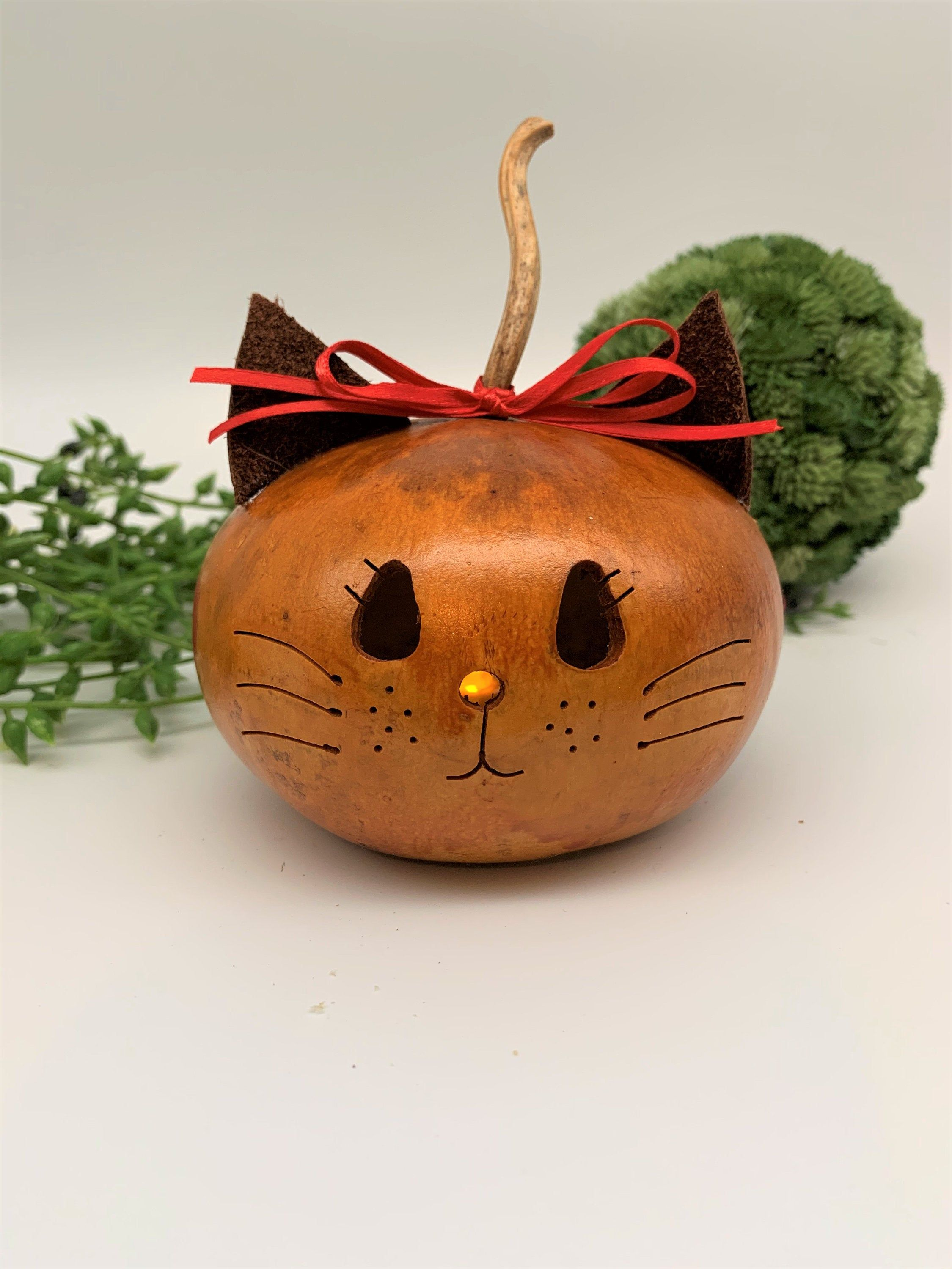 Kitty Cat Gourd Decoration in 2020 Decorative gourds
