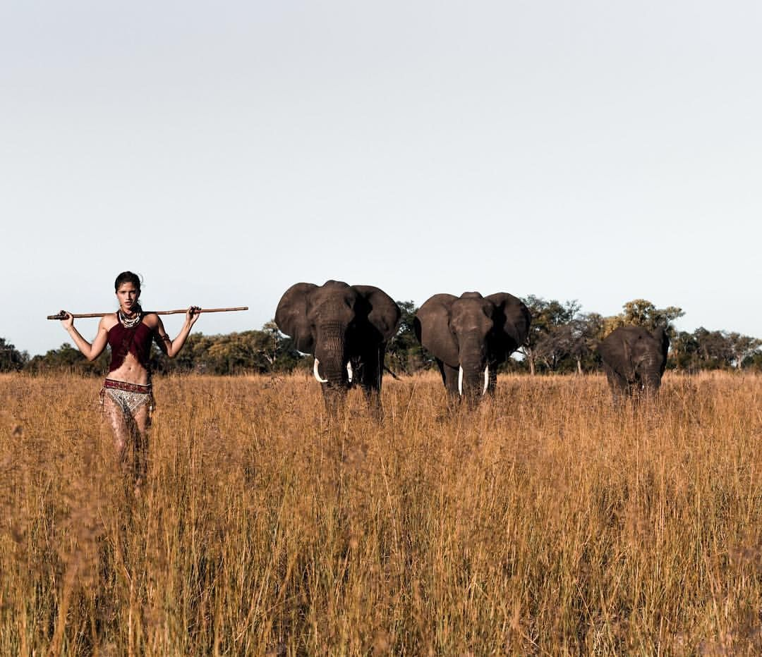 The Abu Herd shot in Botswana, Africa by @grantlegan #rockytakesafrica #botswana #safari #abuherd #CNTvoyages