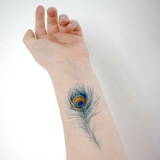 Tatuajes De Plumas Diferentes Diseños Y Sus Significados Te