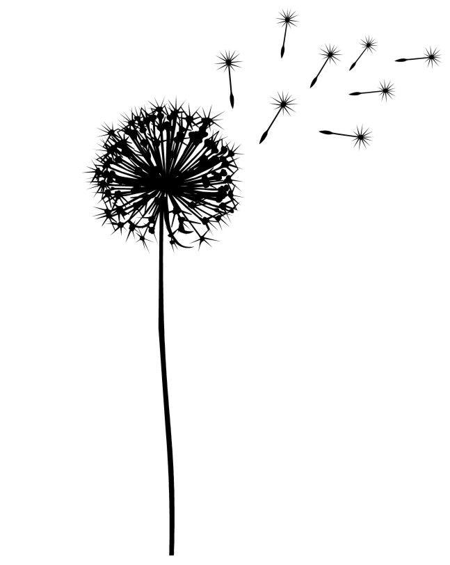 dandelion silhouette for DIY art... | Blumen silhouette, Schattenbilder,  Pusteblume