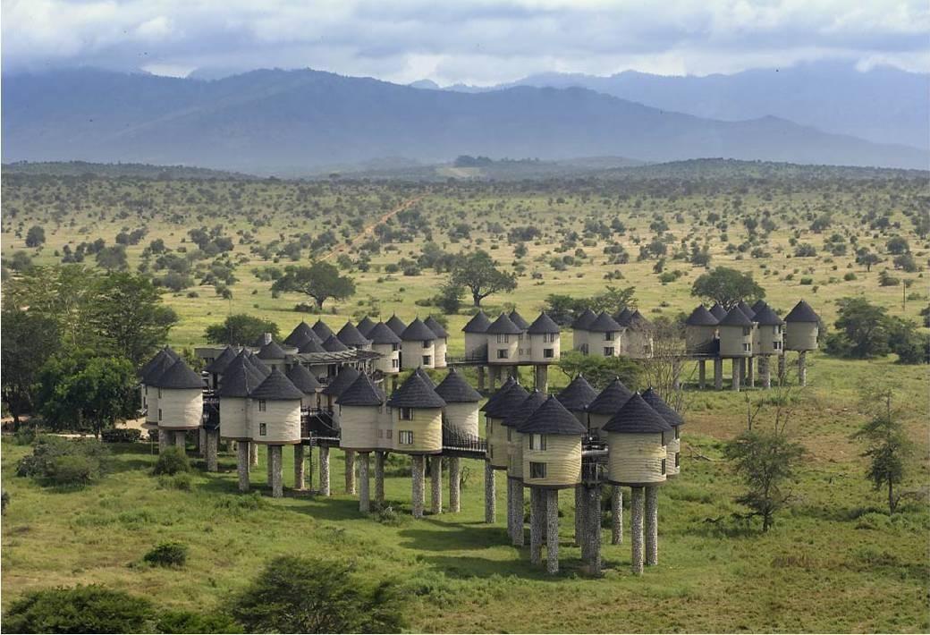 Your African Safari | Kenya travel, National parks, Unique honeymoon  destinations