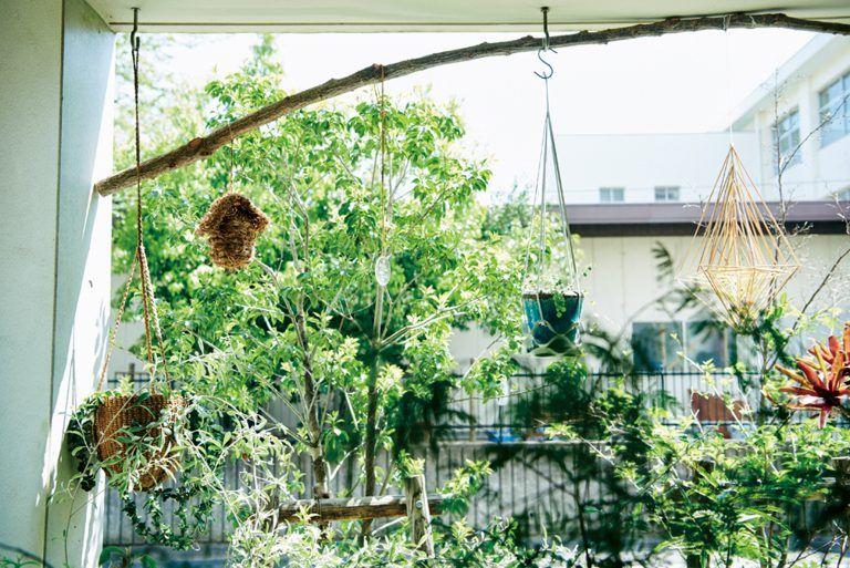 Photo of グリーンを愛する人たち ー お料理好きの緑あふれるダイニング、プレス鈴木純子さんのグリーンユートピア | 【GINZA】東京発信の最新ファッション&カルチャー情報 | LIFESTYLE