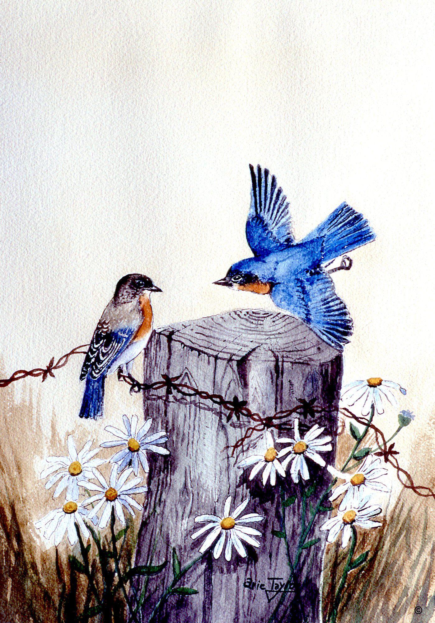 Birds flowers watercolor 12x16 prints fine art bluebirds