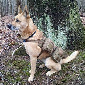 186aff58a61 Amazon.com   OneTigris Tactical Dog Molle Vest Harness Training Dog Vest  with Detachable Pouches (Black