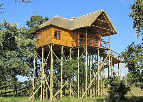 pin by merith bennett on treehouses and treehouse resorts gamethe platform on stilts provides a fantastic view and a creative and fun games lodge