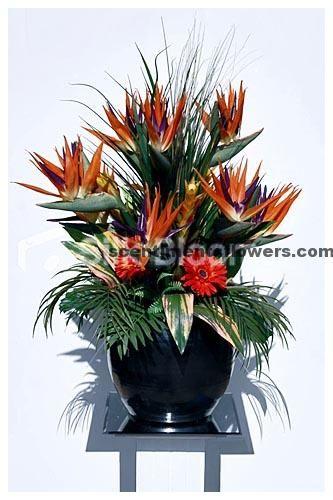 Birds Of Paradise Silk Flower Arrangements Birds Of Paradise Flower Church Flower Arrangements Flower Arrangements