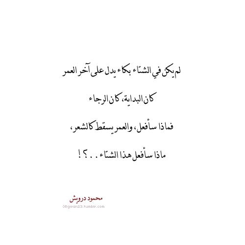 ماذا سافعل هذا الشتاء Quotations Words Arabic Words