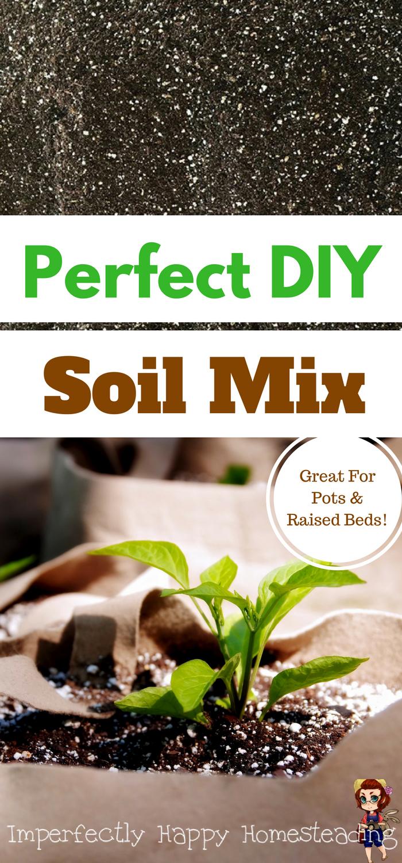 The Best DIY Soil Mix Recipe Organic soil mix, Vegetable