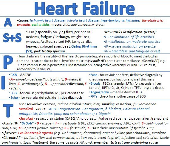 Heart Failure Everything You Need To Know!!! MD