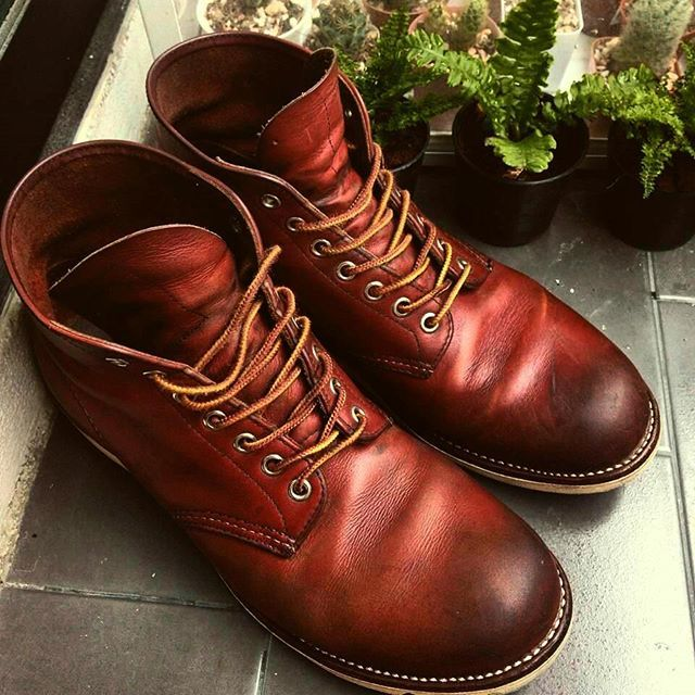 c4ea3a69aa6 Red Wing 8166 Classic Work 6