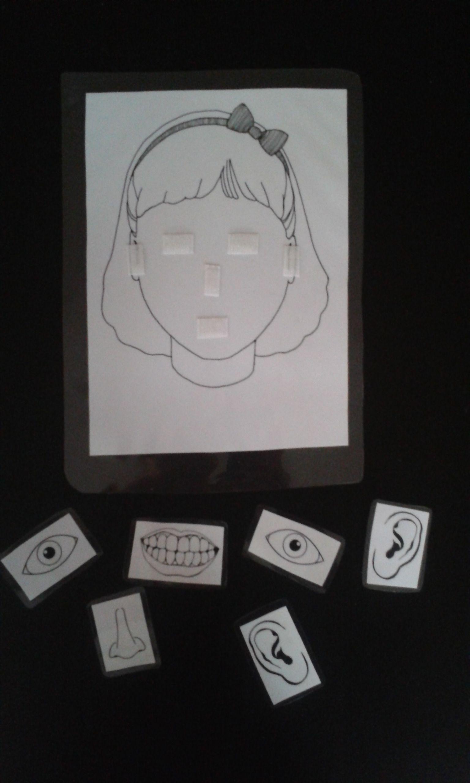 Delen van het gezicht juist benoemen en aanduiden.