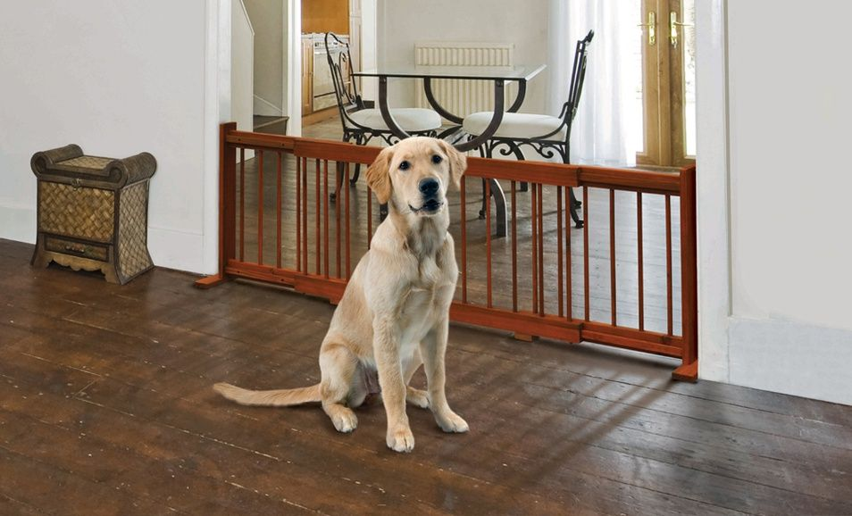 24 99 For A Pet Store Expandable Wooden Pet Gate 49 99 List Price Free Shipping And Returns Pet Gate Pet Store Pets