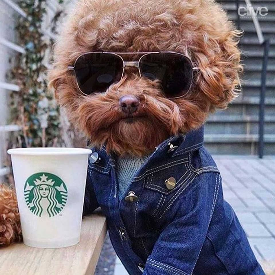 FEEL GOOD FRIDAY! Did someone say COFFEE? FeelGoodFriday