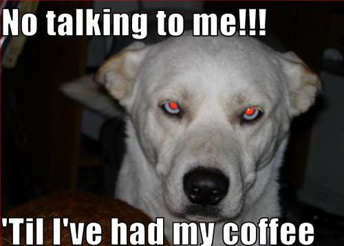 Coffee-dogs-11910120-500-358.jpg (500×358)