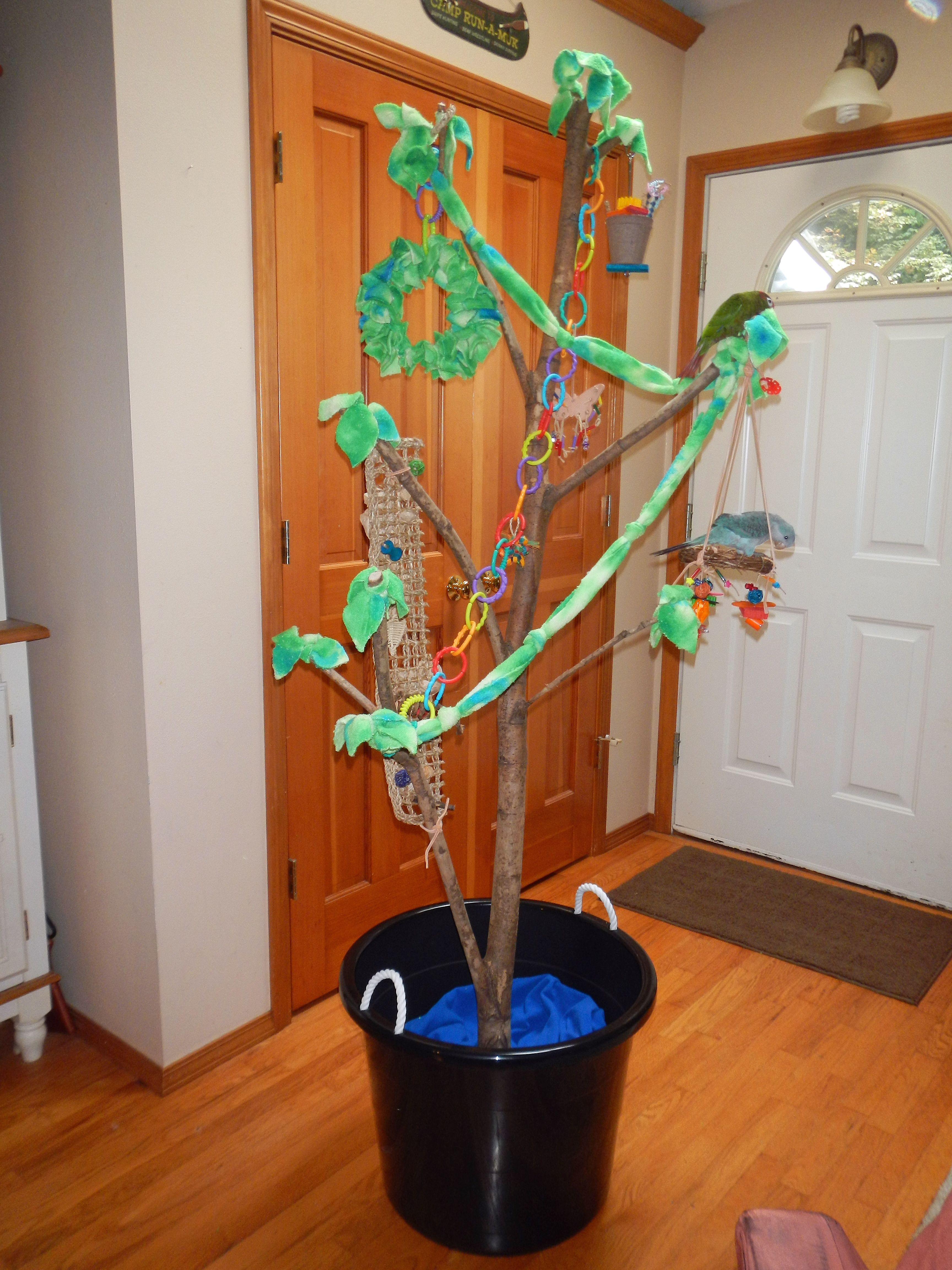 diy parrot play forage tree great for stimulating. Black Bedroom Furniture Sets. Home Design Ideas