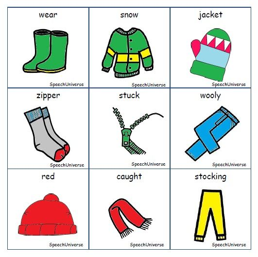 The Jacket I Wear In The Snow Phonemic Awareness Book Companion