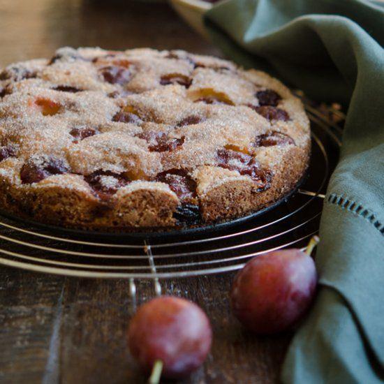 Plum Cake made with Italian prune plums.