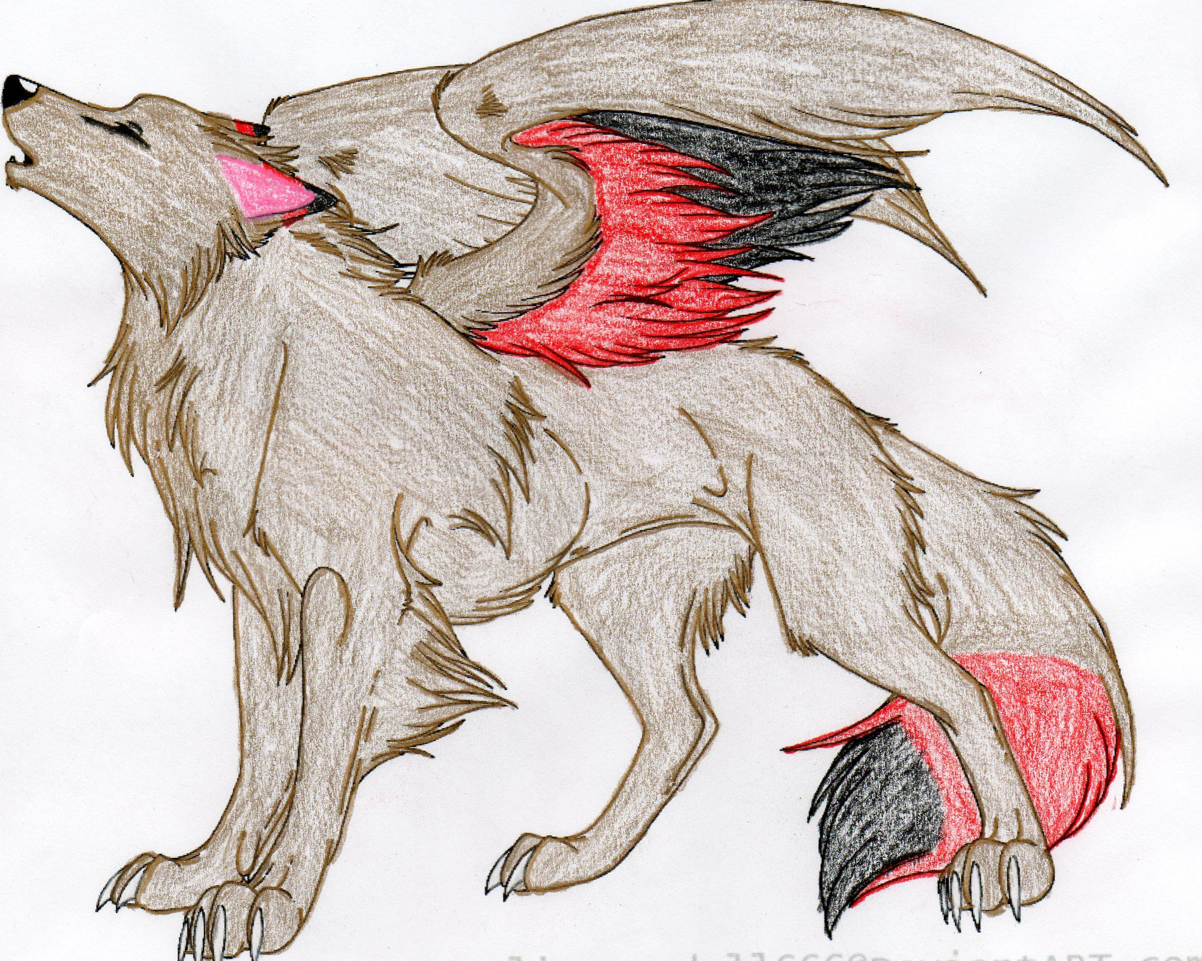 Winged Wolf Colored by DuetMaxwell on DeviantArt | dragons ... Anime Fire Wolves With Wings