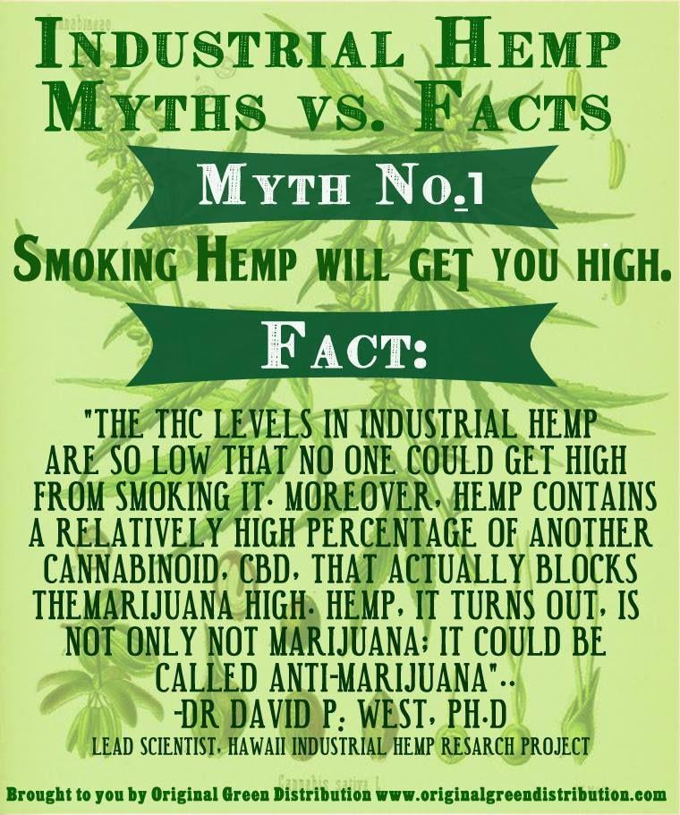 Myth – CBD is Good & THC is bad