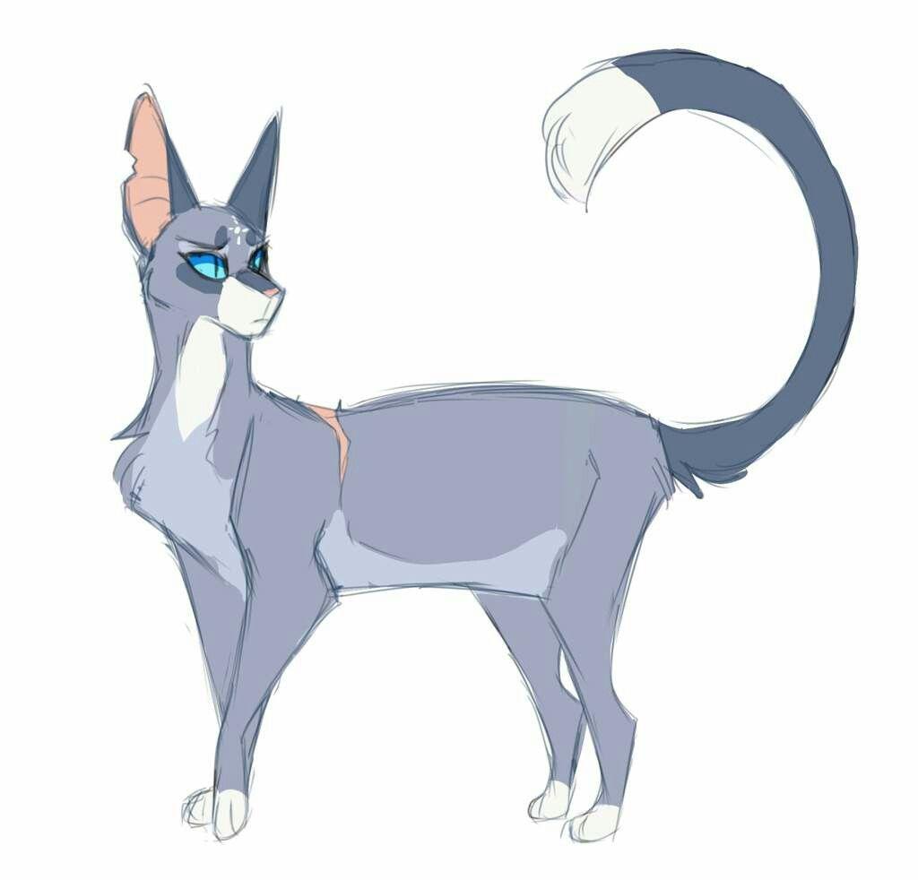 Bluestar She Cat Warrior Cats Fan Art Warrior Cat Drawings
