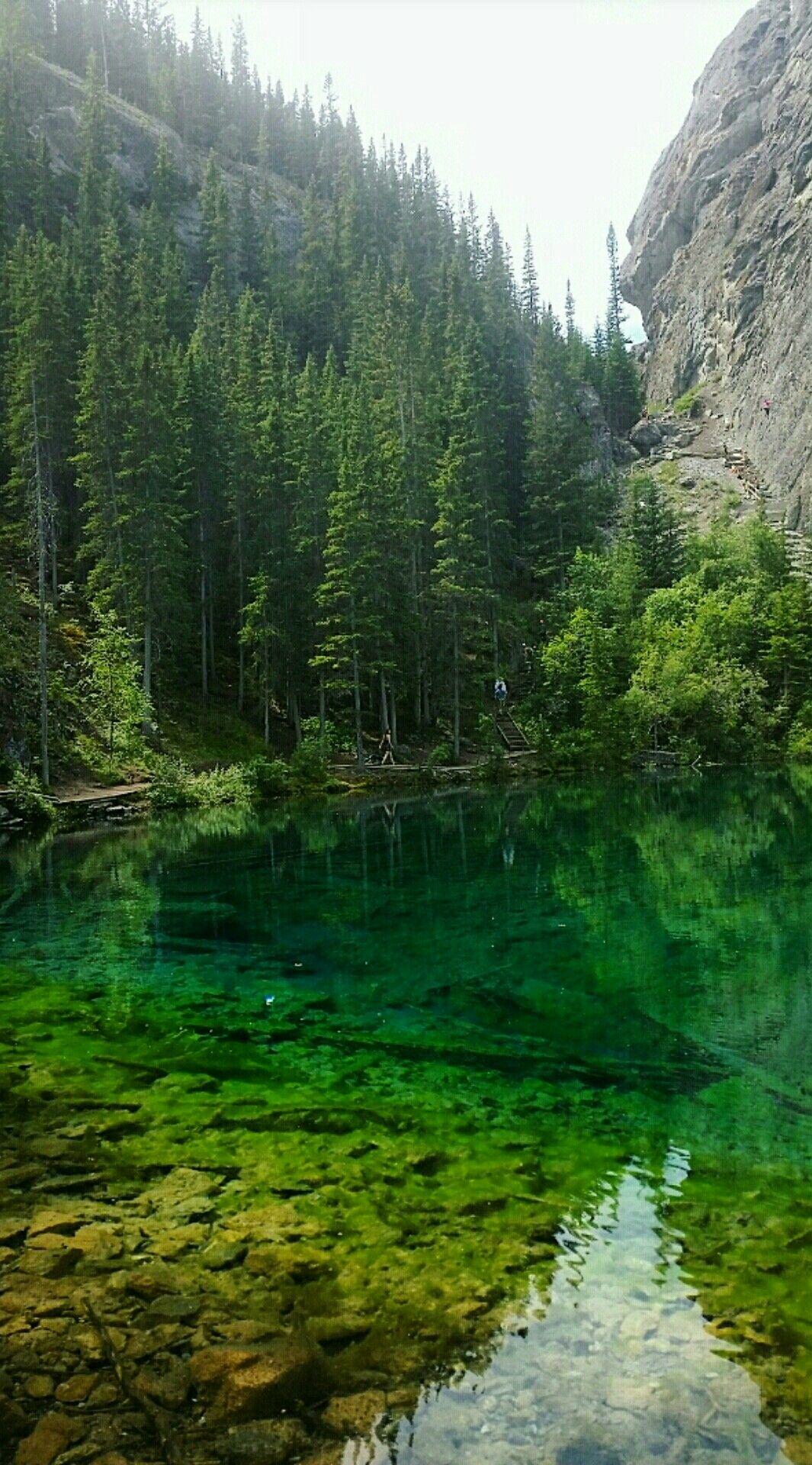 Grassi Lake Trails