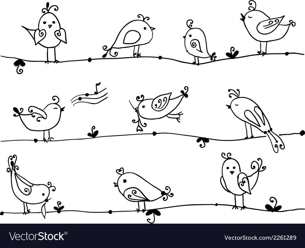 Set of cute birds in vector image on VectorStock