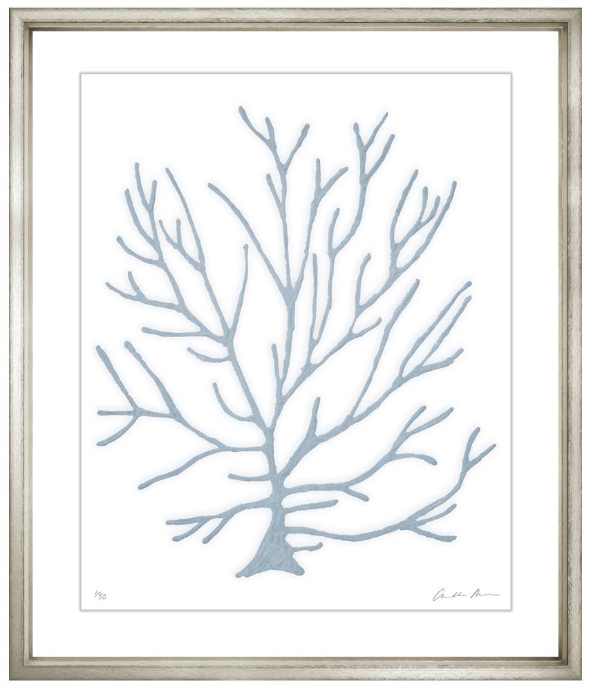 Charlotte morgan blue velvet framed coral wall art vi wall art