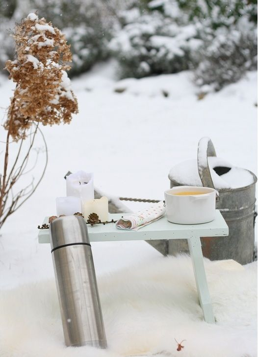 Picnic Is Over And Winter Is Coming >> Pin By Shawna Collier On Winterscapes In 2019 Winter Garden
